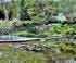 "Jardin aquatique ""Acorus"" en Haute-Saône"