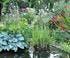 Jardin de Méli-Mélo dans le Doubs