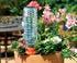 Cône microporeux dans pot de fleurs