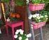 Terrasse fleurie de Marie-Claude