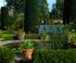 Le Bois des Moutiers à Varengeville