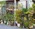 jardin de pots à deux étages
