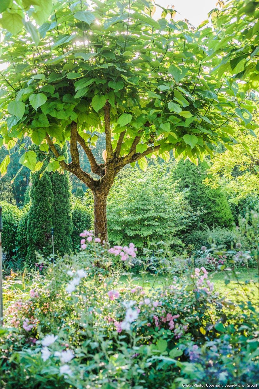 étage végétation jardin