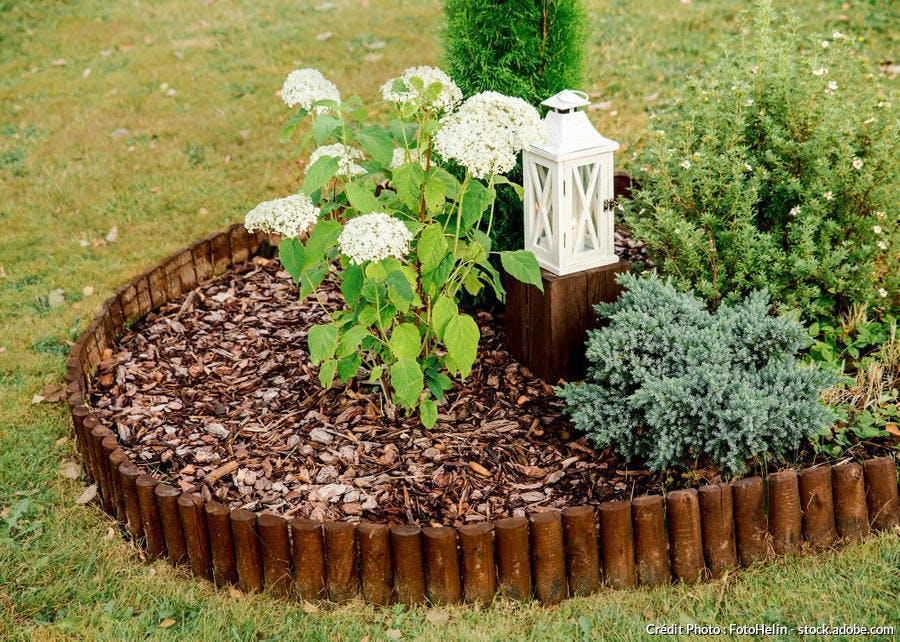 ecroce bois hortensia paillis
