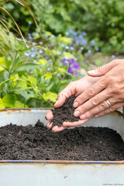Amendement compost