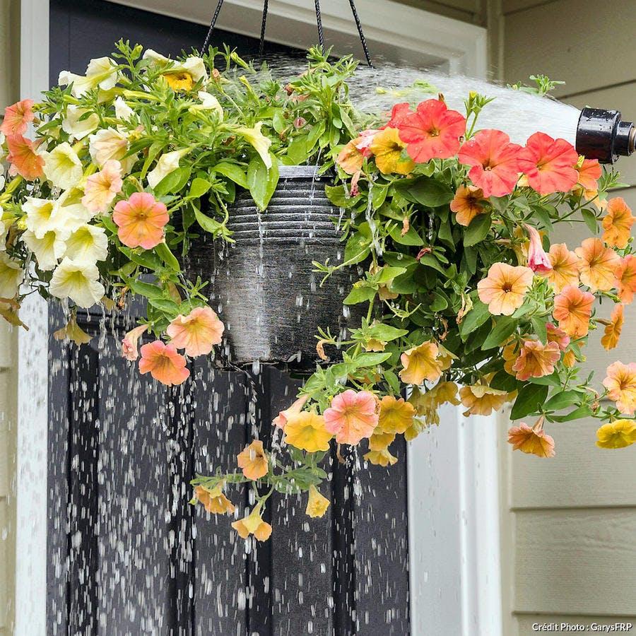 Lessivage jardinière