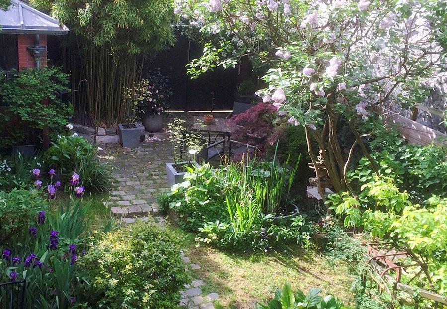Lilas dans un jardin caché parisien