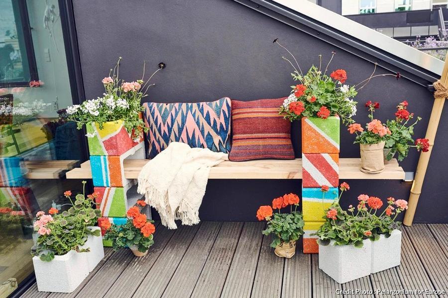 Diy Une Jardiniere De Geraniums En 4 Etapes Simples