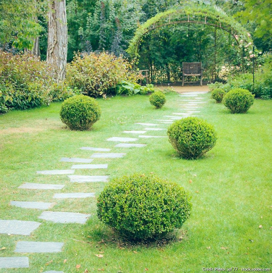 Pas japonais jardin anglais