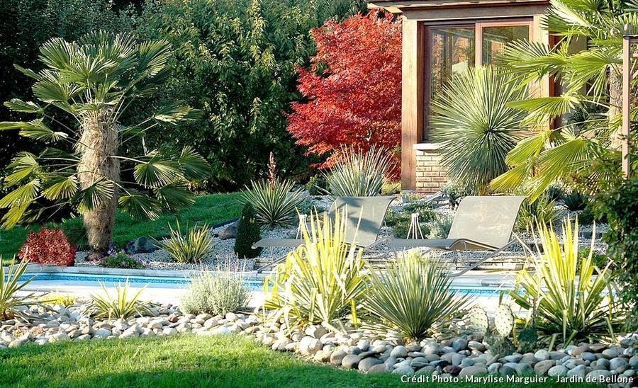 cultiver des plantes exotiques en climat froid d tente. Black Bedroom Furniture Sets. Home Design Ideas