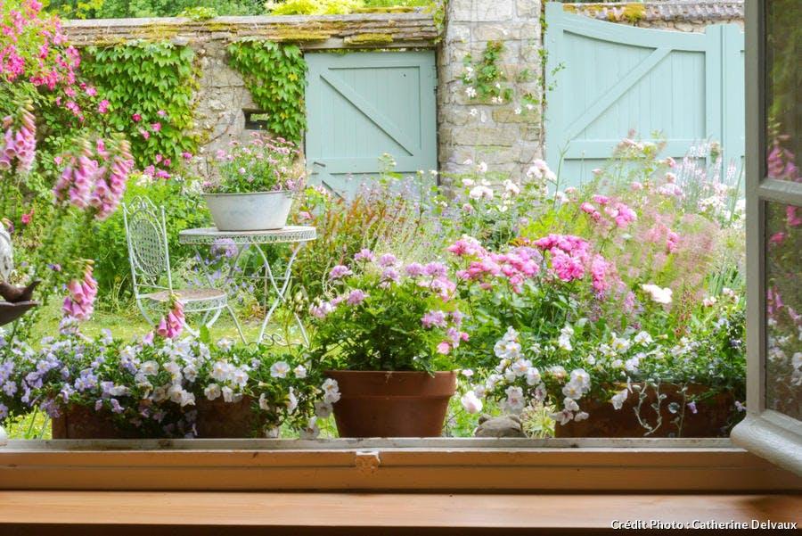 Jardin de campagne fleuri