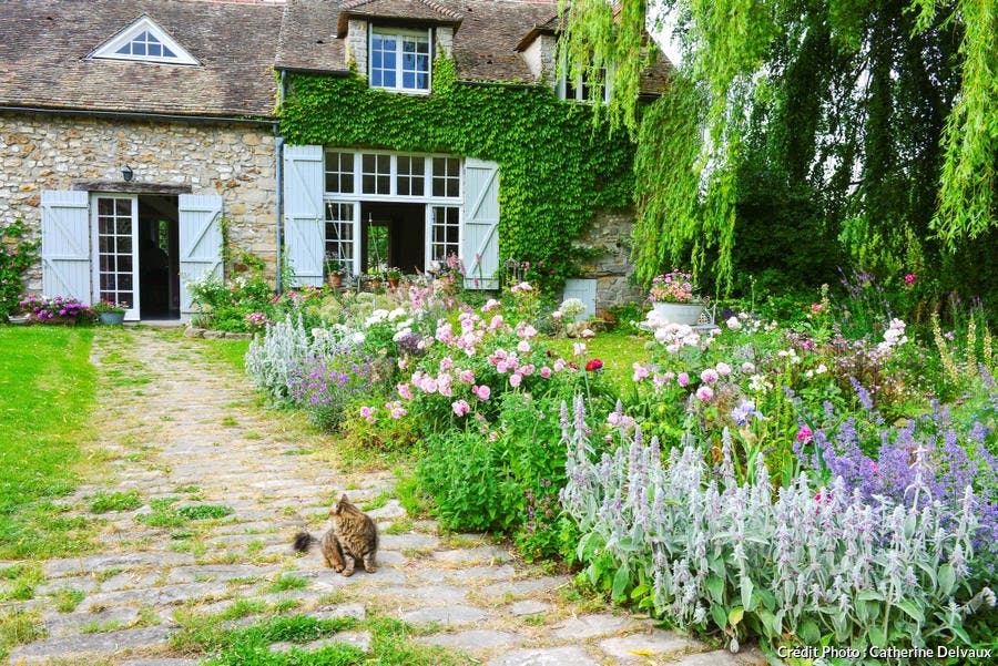 Jardin de campagne