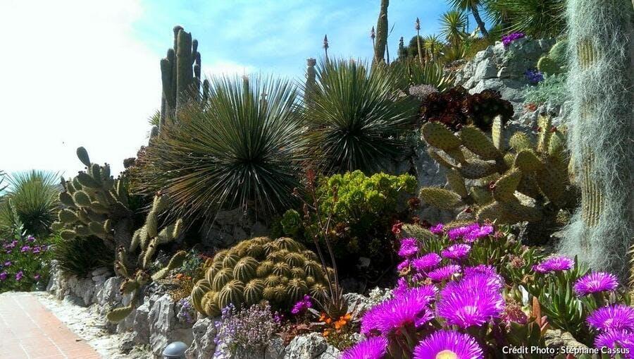 Jardins exotiques : les 10 plus beaux à visiter en France