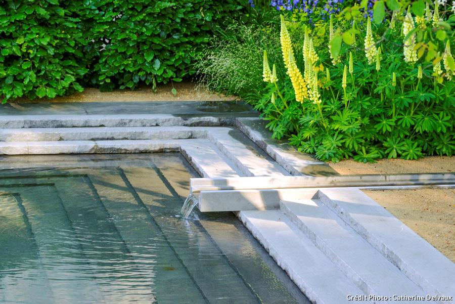 dj-jardin-contemplatif-suppl119-zoom-bassin.jpg