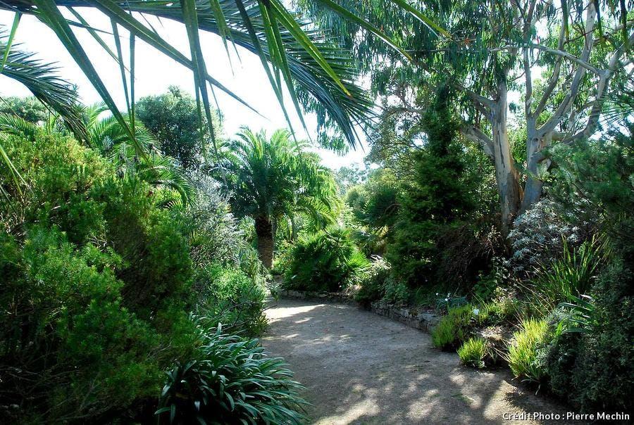 Jardin de Roscoff