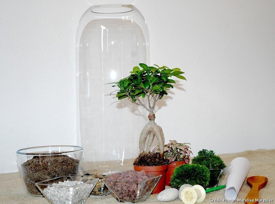 Matériels pour fabriquer un terrarium humide