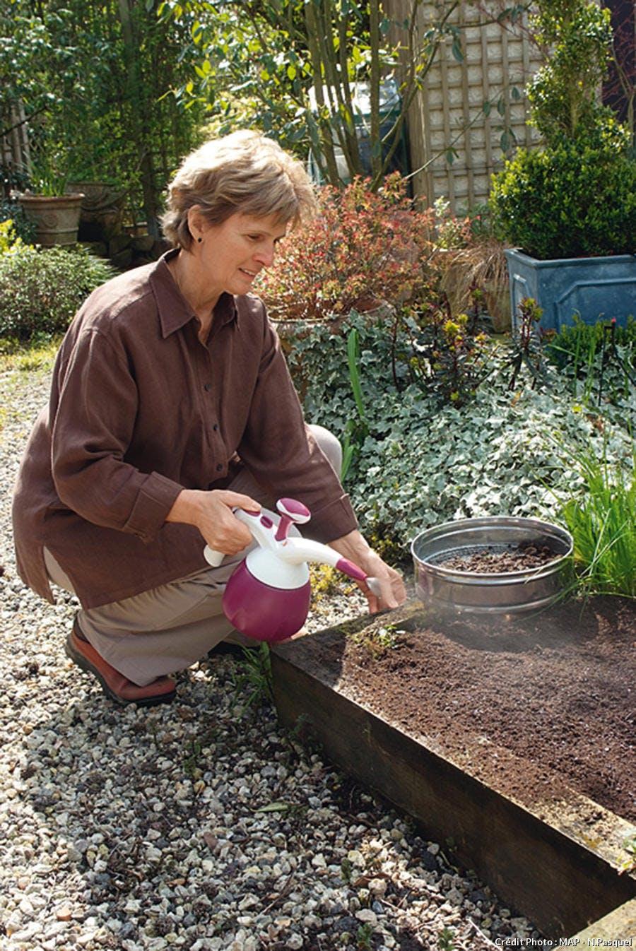 Arrosage du tapis de fleurs