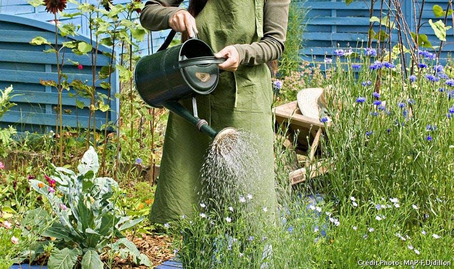 Arrosage jardin en été
