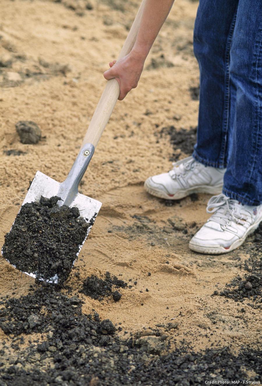 Humus incorporé dans le sol