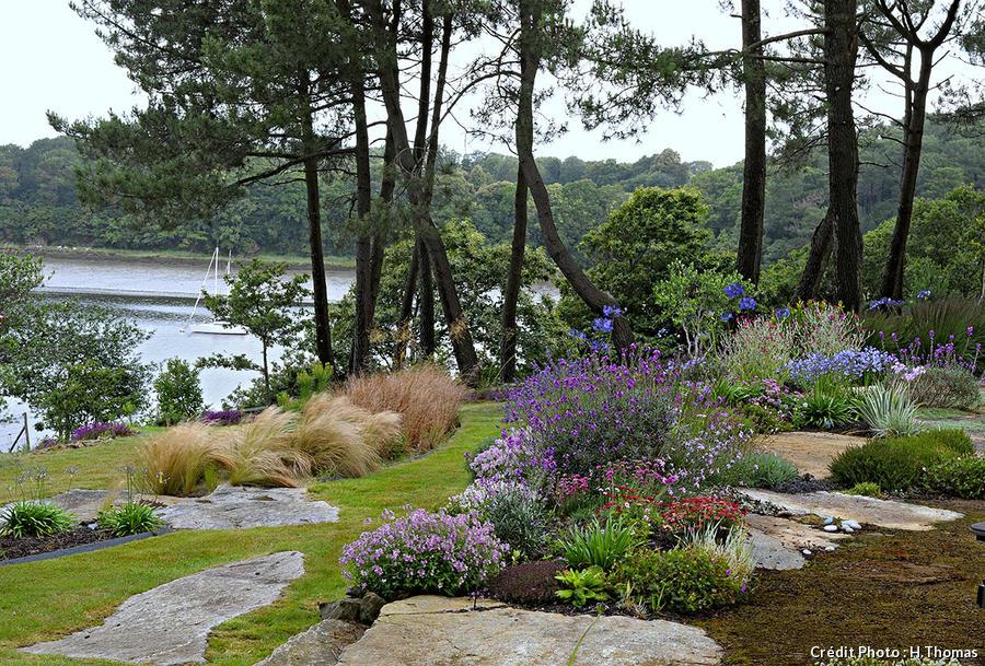 Un jardin breton d\'agapanthes et d\'hortensias bleus ...