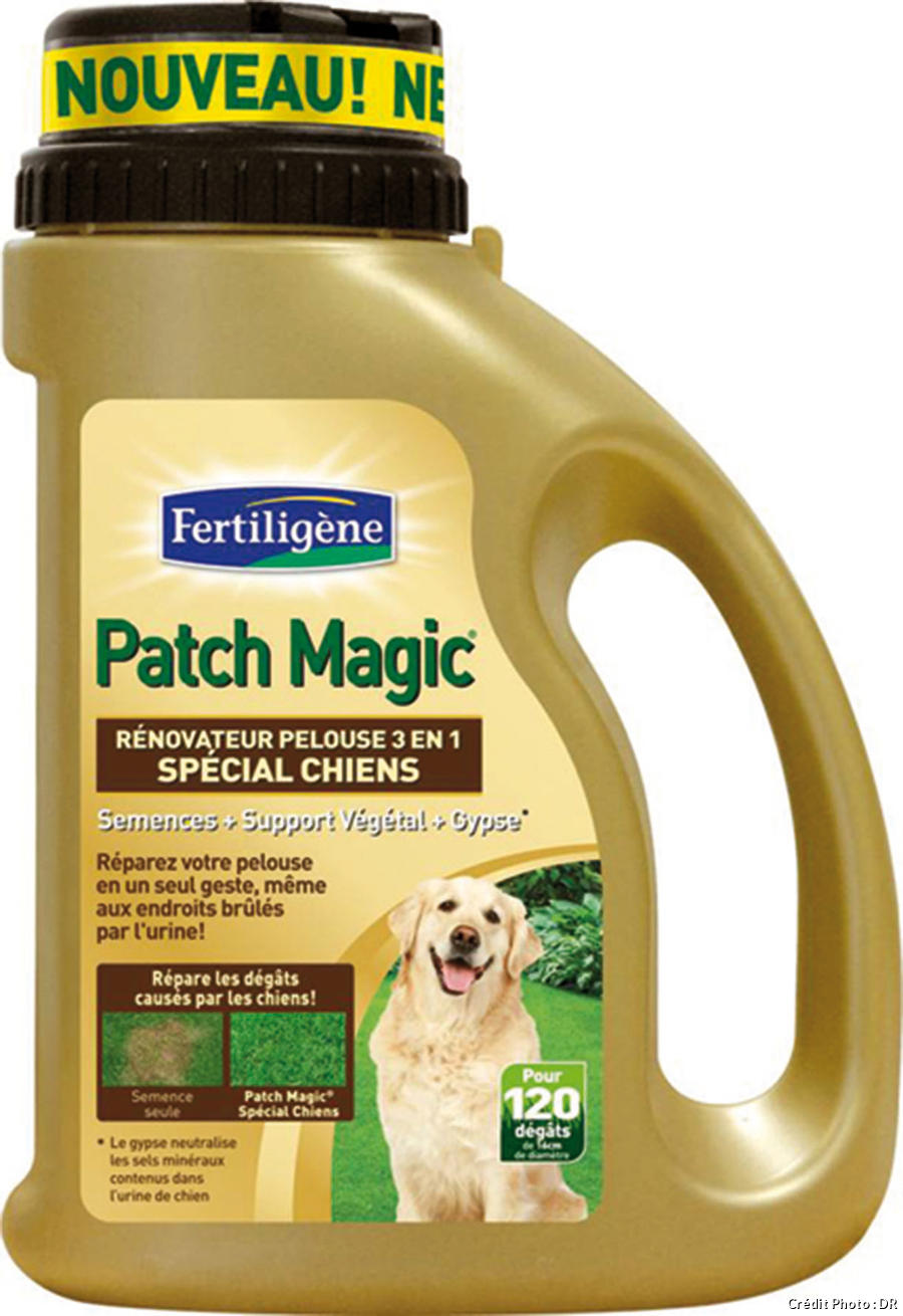 Patch magic spécial chien