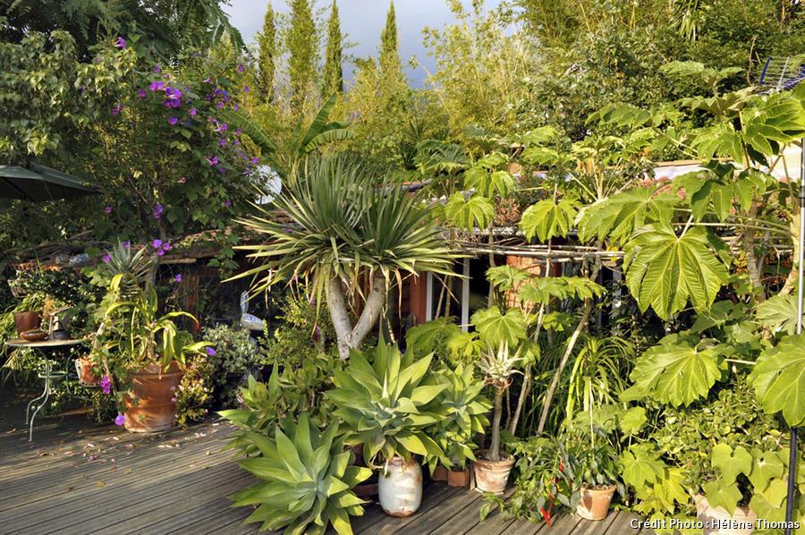 Terrasse suspendue du jardin de Laurent.