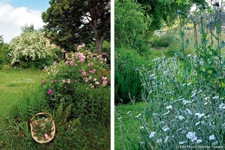 jardin de fleurs à manger