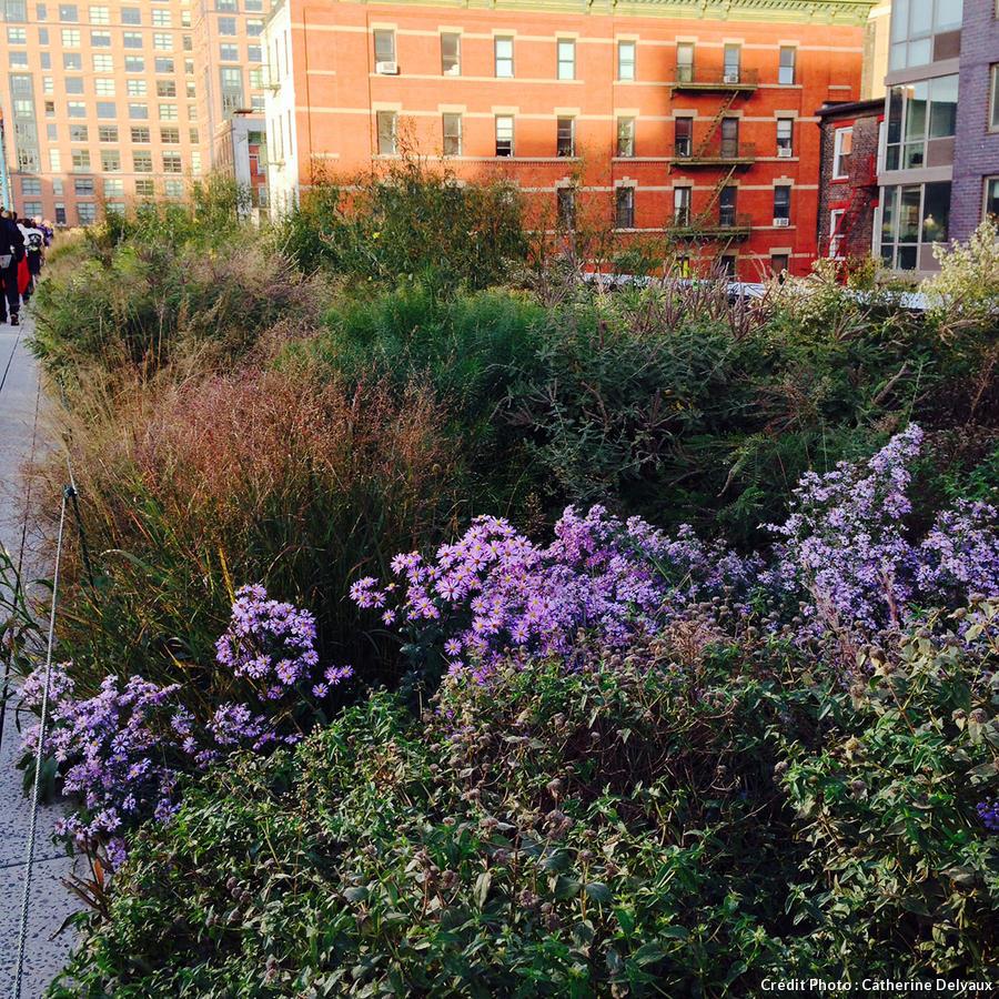High Line, vue au soleil couchant