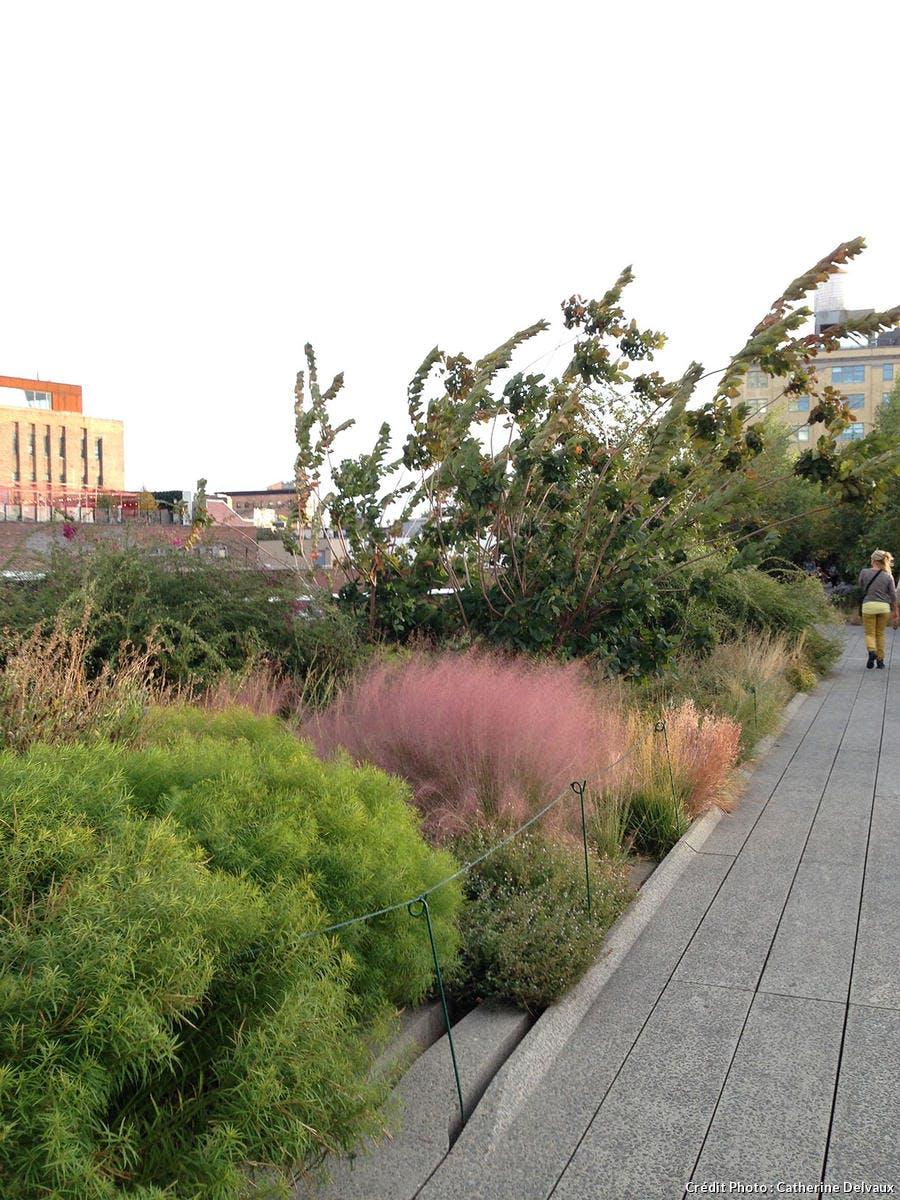 High Line, promenade et massif