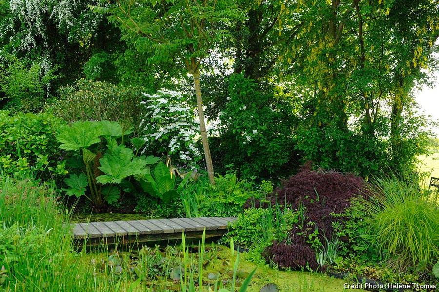 Jardin des Lianes 1
