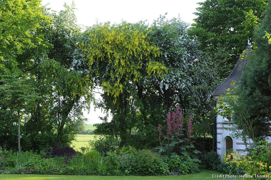 Jardin des Lianes avec des allées