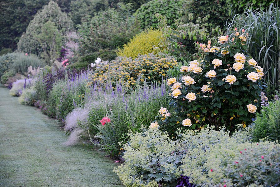 Jardin reve de pan bordure stipa