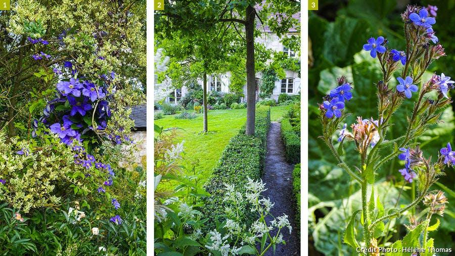 plantes et pelouse visite de jardin