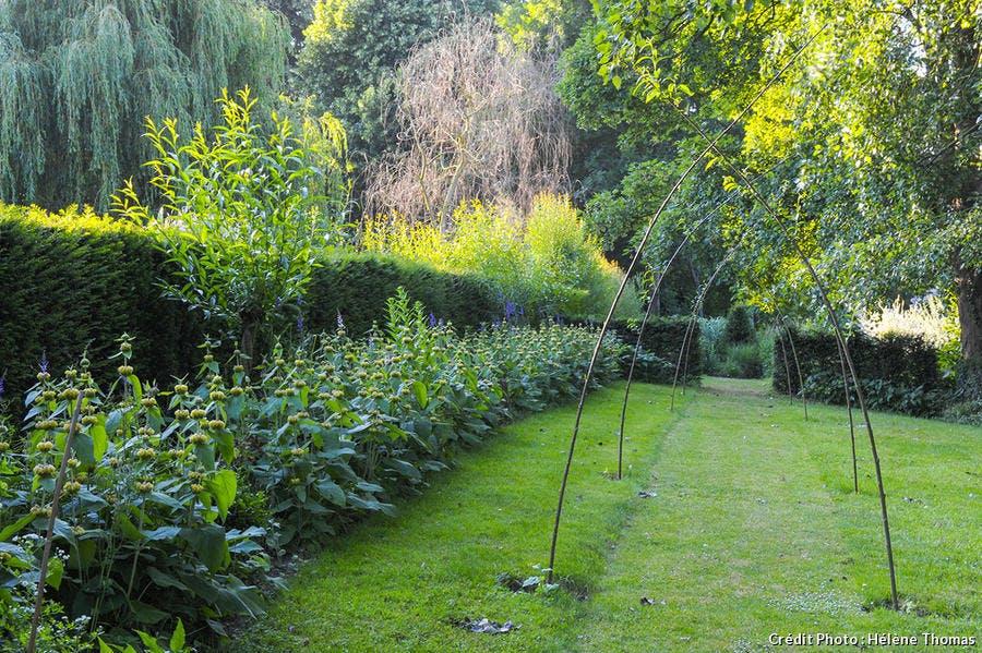dj119_visite-jardin-pelouse.jpg