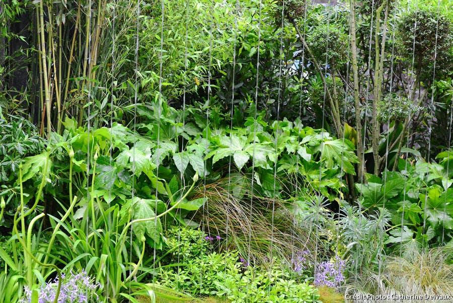 dj122-jardin-apesanteur-ambiance-tropicale.jpg