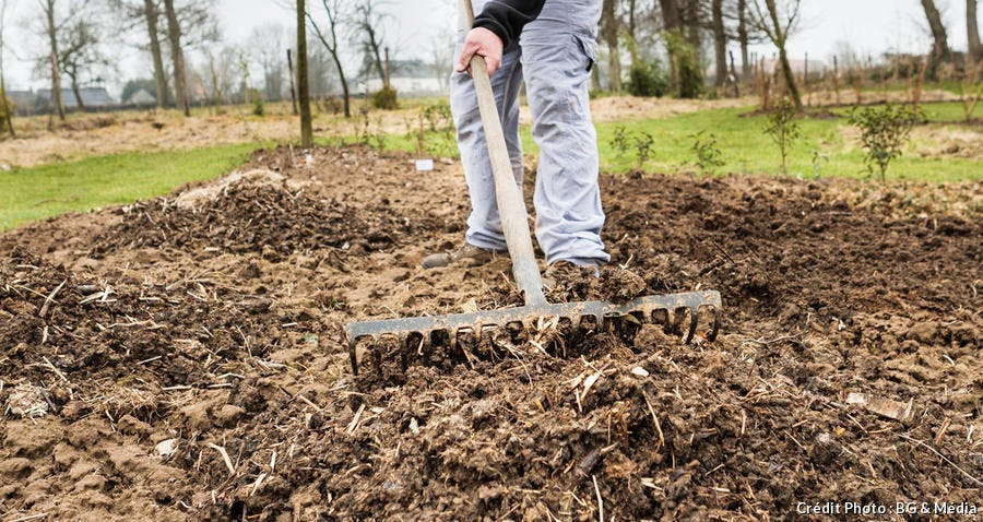 Un jardinier qui passe le râteau pour travailler la terre