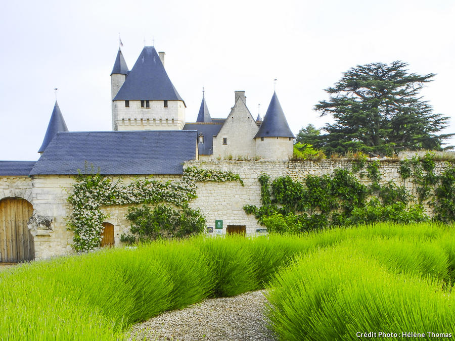 dj125-chateau-rivau-beatrice-pichon.jpg