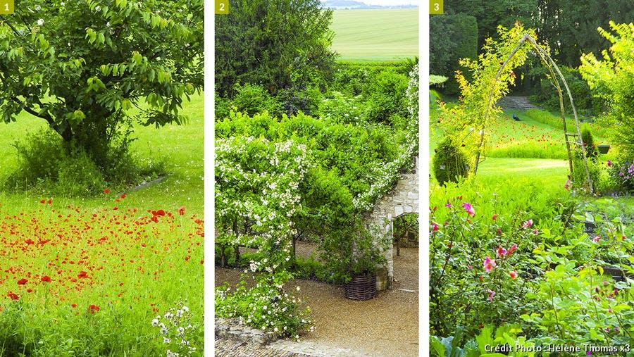 dj125-chateau-rivau-coquelicot-nigelle-roses-anciennes-arche-paon-beatrice-pichon.jpg