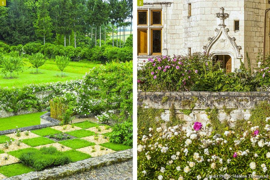 dj125-chateau-rivau-damier-rosiers-beatrice-pichon.jpg
