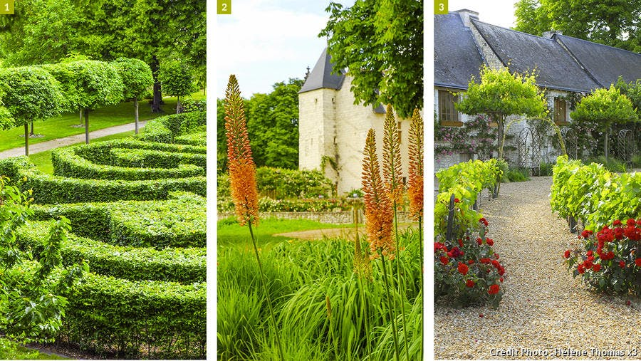 dj125-chateau-rivau-labyrinthe-eremurus-vignes-beatrice-pichon.jpg