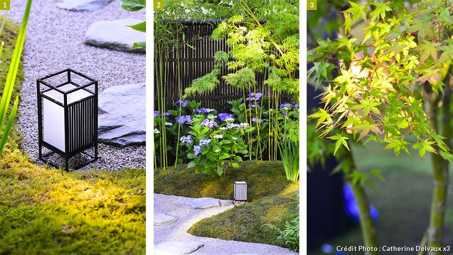 dj125-jardin-zen-jouer-avec-les-codes-saori-imoto-c-delvaux.jpg