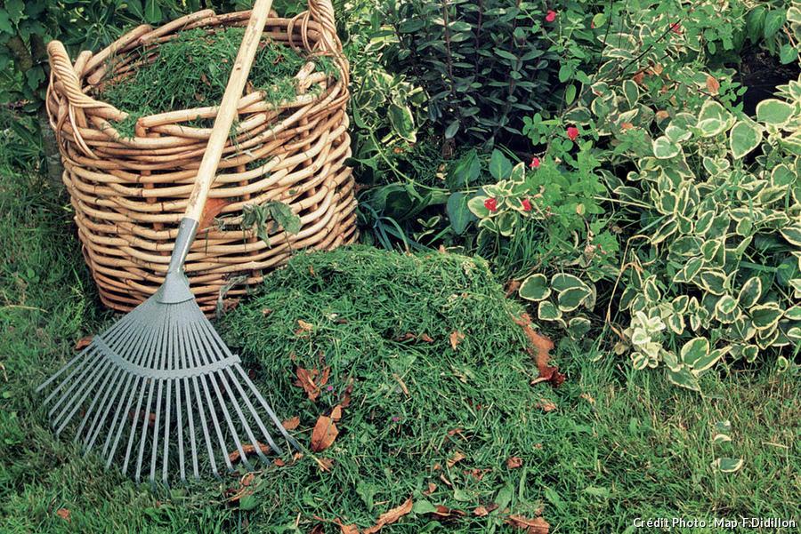 pelouse rateau