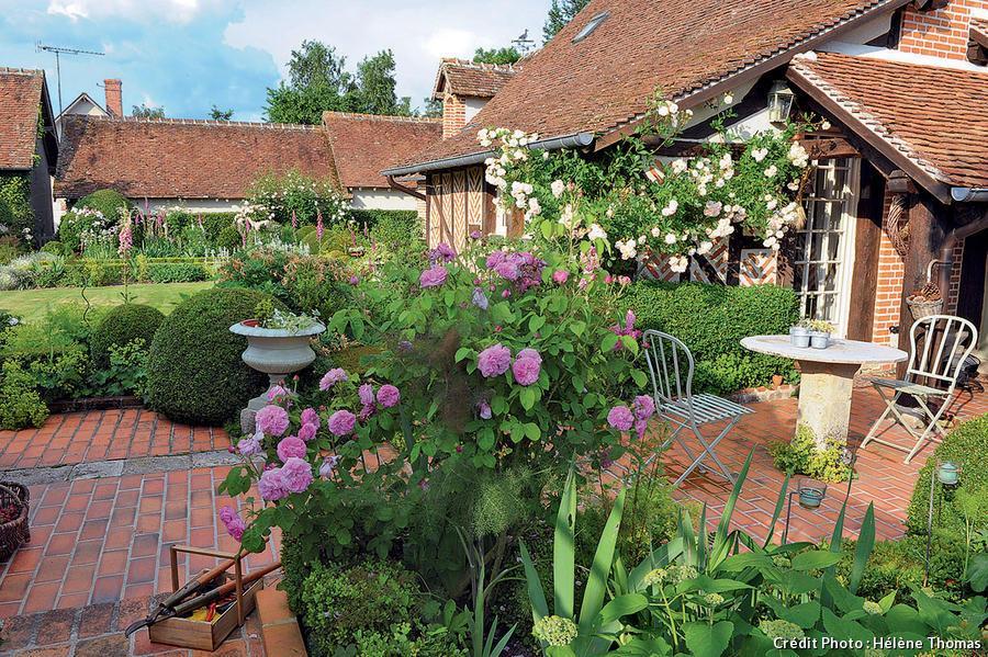 La terrasse et ses rosiers.