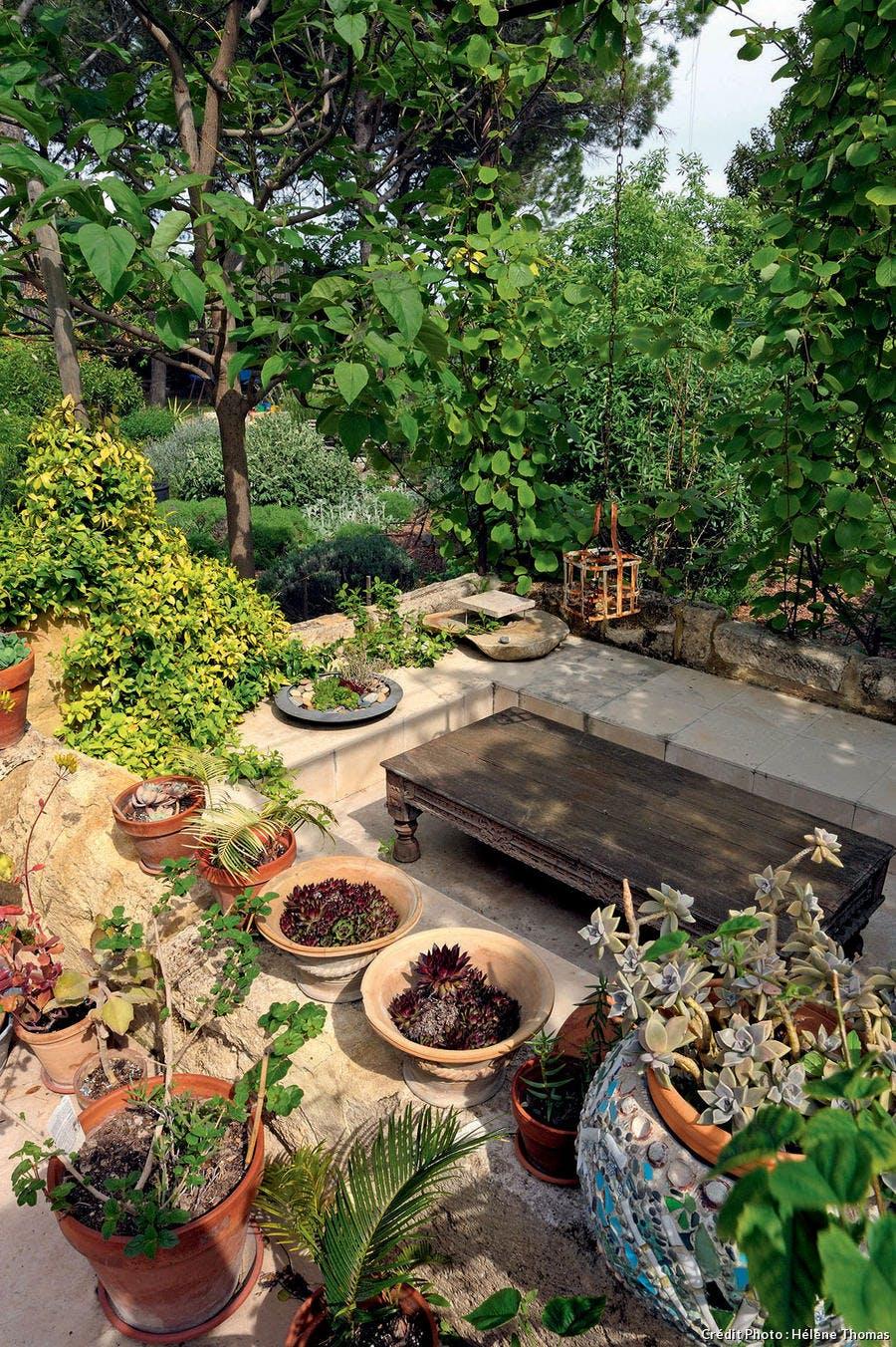 Le patio, envahie par une multitude de potées.