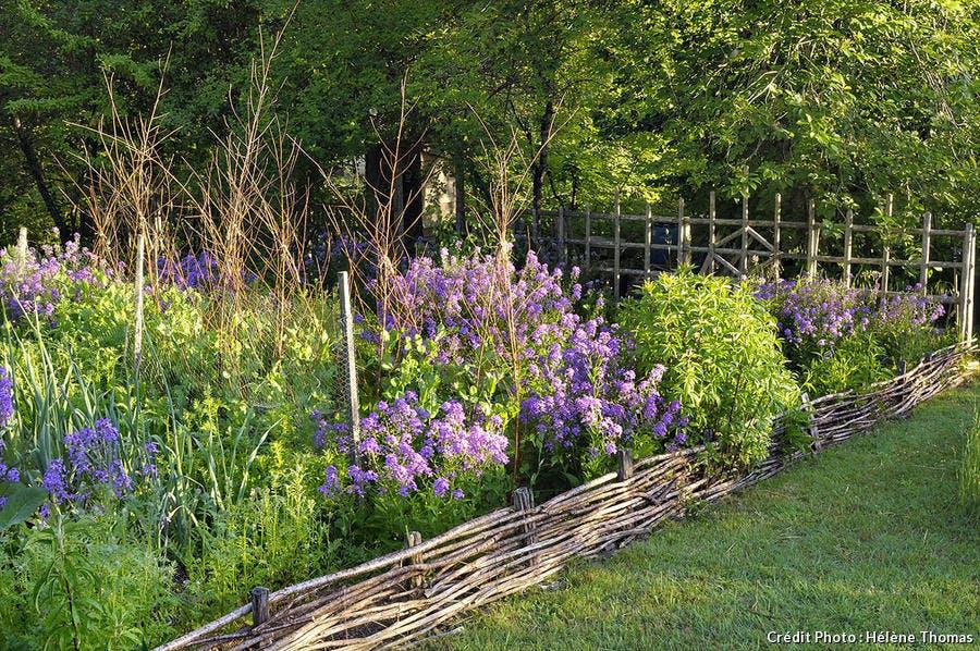 Jardins de l'Albarède, bordure en plessis