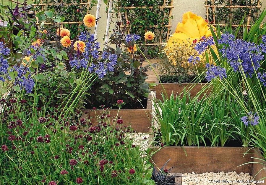Des plantes aux couleurs chaudes dans des carrés de bois