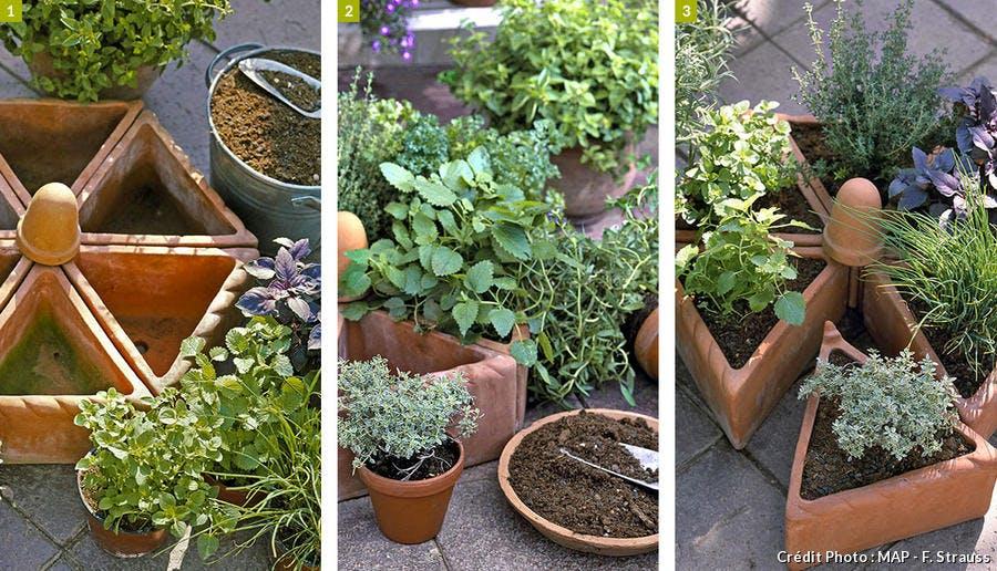Planter des aromatiques