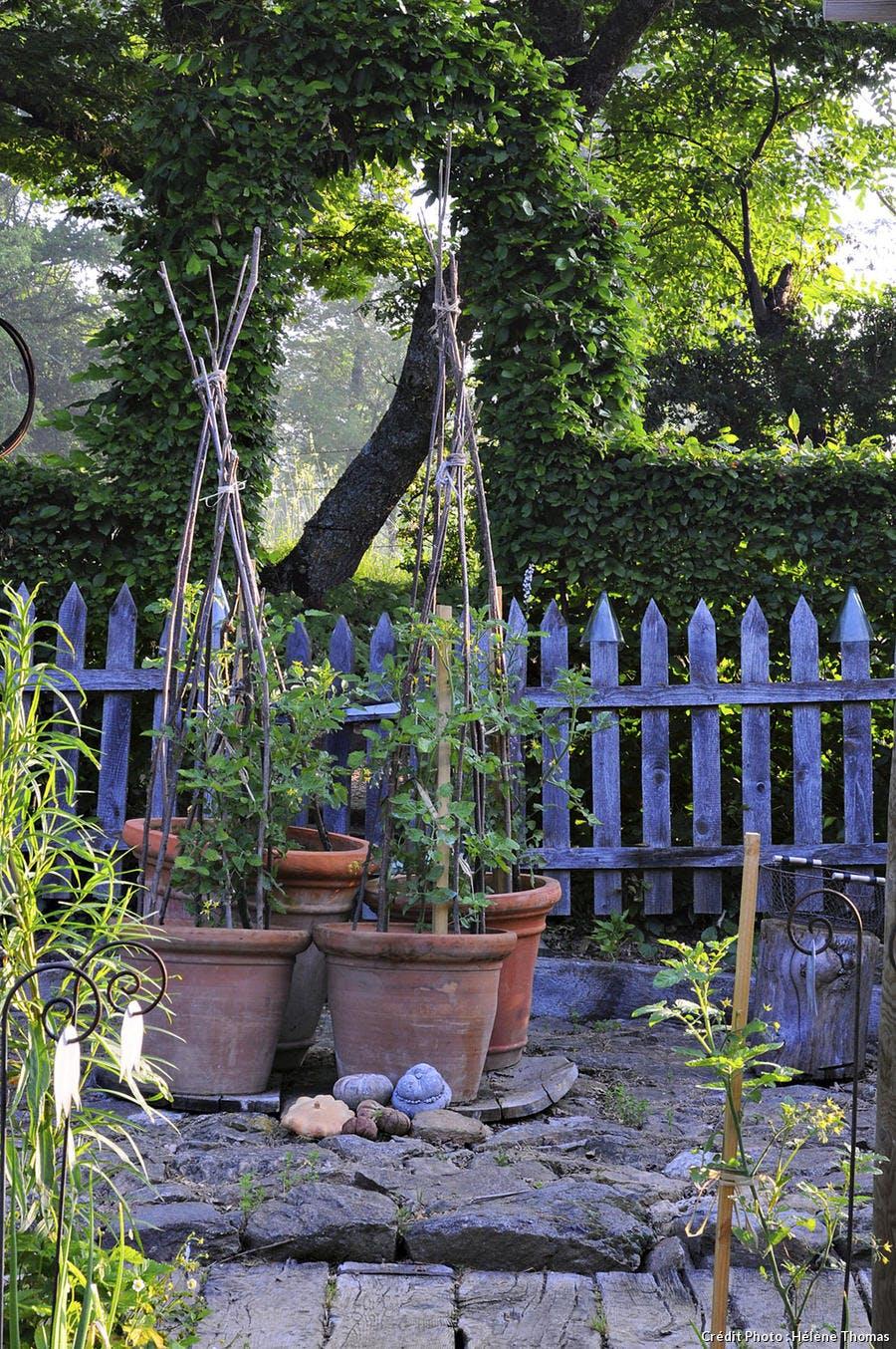 Clôture de bois bleu