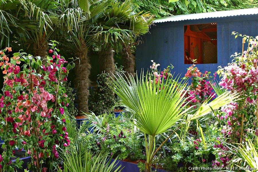 Creer Un Jardin Exotique Durable Detente Jardin
