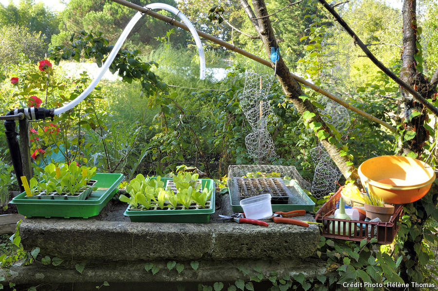 Potager Bordeaux table à semis